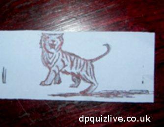doodled tiger