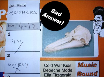 bad quiz question answer