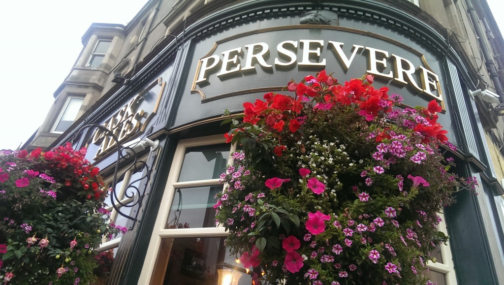 persevere flowers