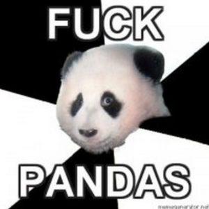 I fucking hate pandas
