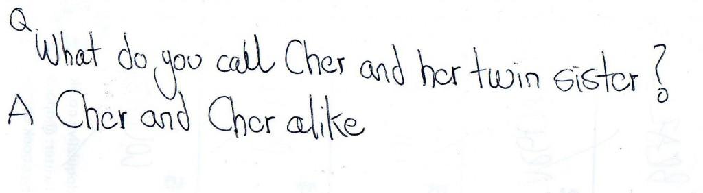 joke cher and cher alike