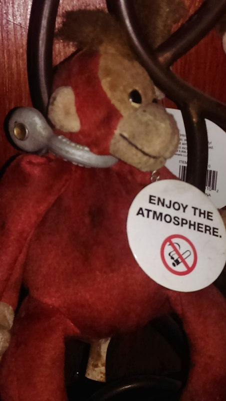 om enjoy the atmosphere monkey