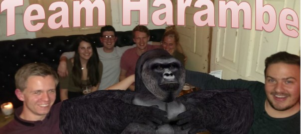 Team Harambe win the quiz